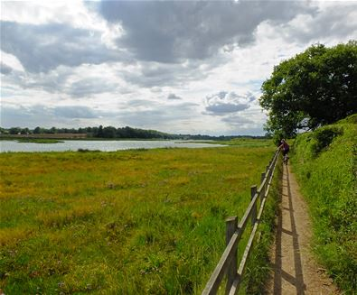Martlesham Creek - Stephen Squirrell
