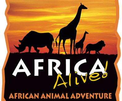 Christmas at Africa Alive!