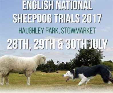 English National Sheepdog Trials..