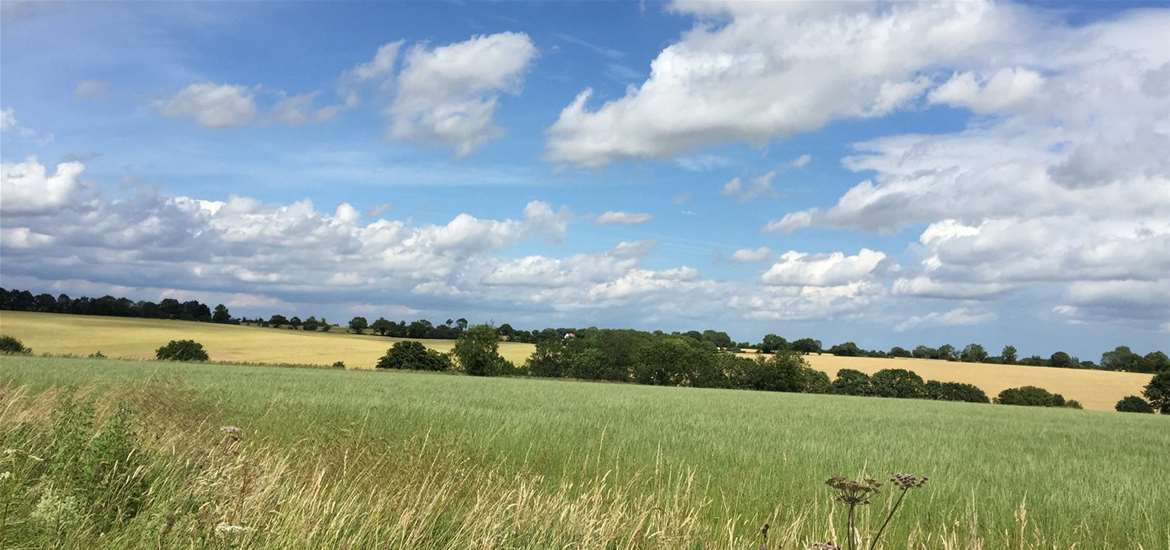 WTS School Farm Cottages Countryside Halesworth