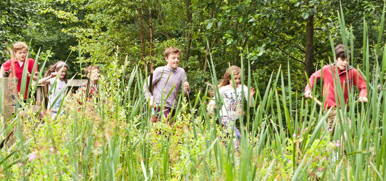 Rendlesham Forest-Kids crossing the bridge