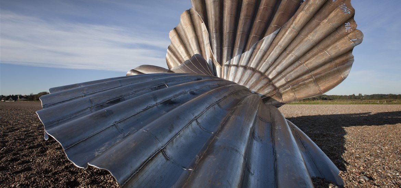 Articles - Maggi Hambling - Scallop Shell