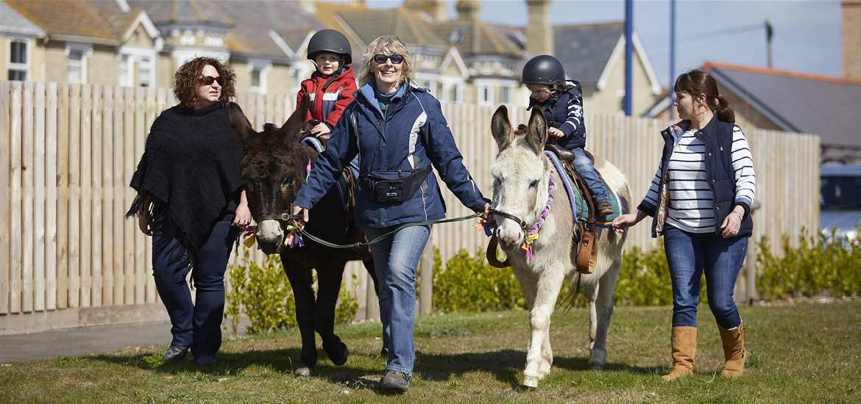 South Kiosk Donkey Rides