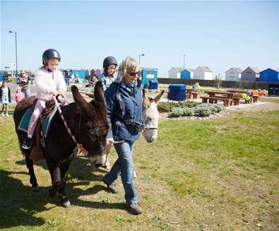 Donkey rides and Birthday celebrations - South Kiosk at Martello Park!