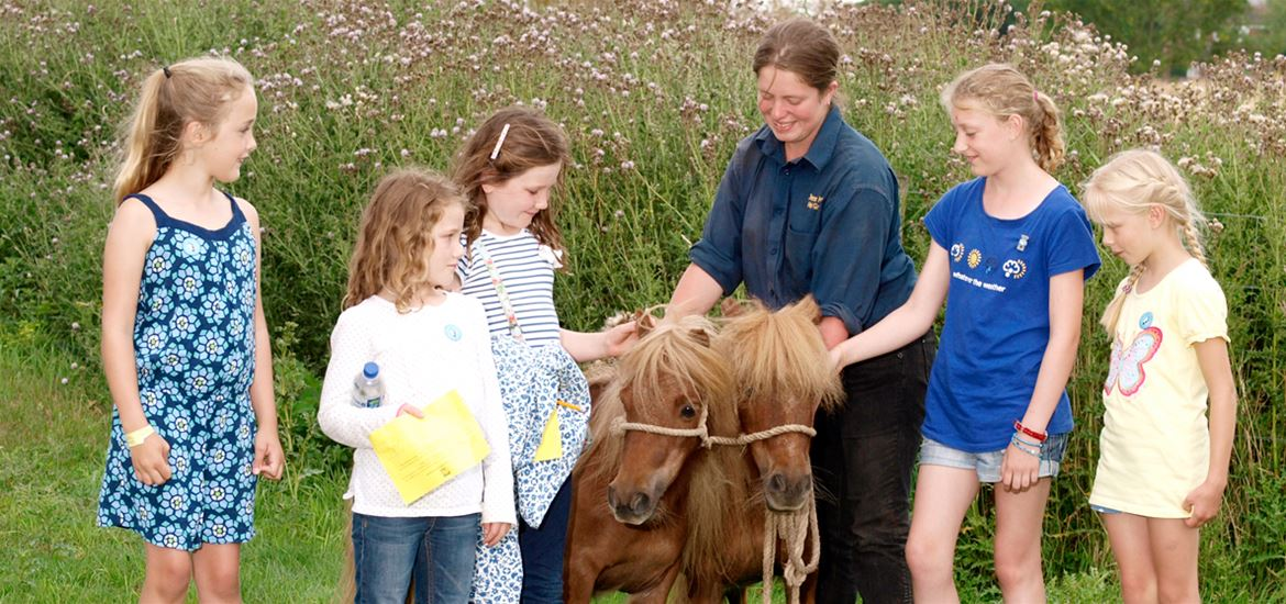 The Suffolk Punch Trust Kids with Ponies