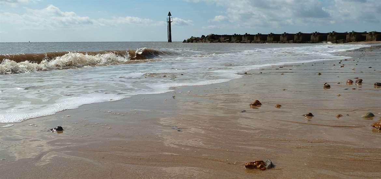 TTDA - Discover Landguard - Beach