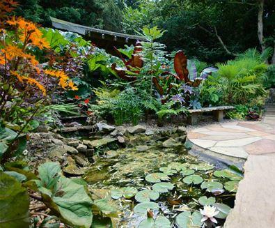 Henstead Exotic Gardens
