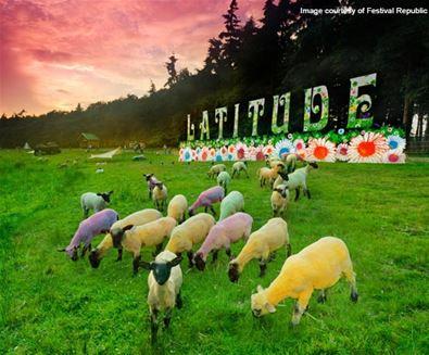 Latitude Festival Sheep (C) Festival Republic