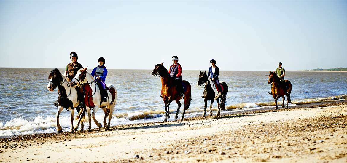 Pakefield Riding School - Attractions