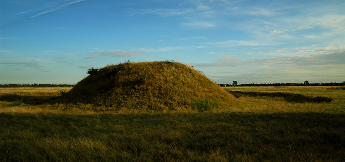 Sutton Hoo - Mound with Sky