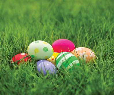Easter Egg Hunt &..
