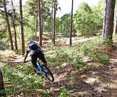 Explore The Suffolk Coast on Two Wheels
