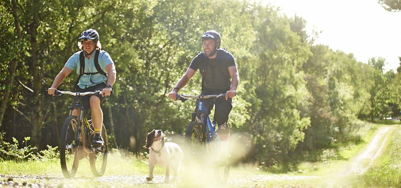 Biking in Rendlesham