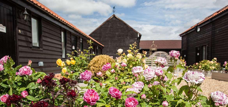 Weddings - Mollett's Farm - Gardens