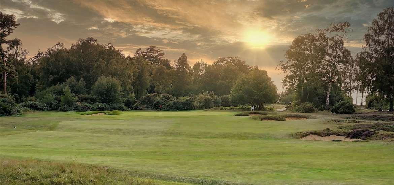 TTDA - Woodbridge Golf Club - 16th hole at sunset