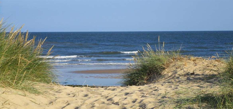 TTDA - Walberswick Beach - view through the dunes (c) Jane Calverley