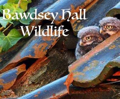 Bawdsey Hall Wildlife and..