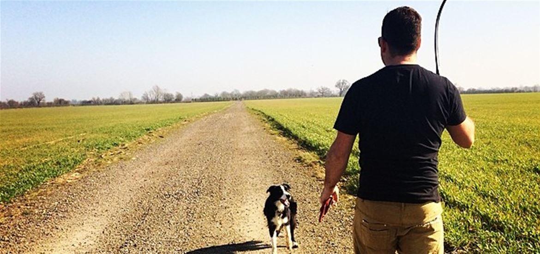 Dog friendly walks on The Suffolk Coast