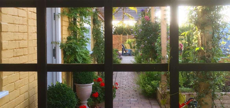 TTD - Darsham Nurseries - Garden