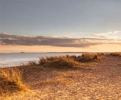 The Suffolk Coast's Wild Beaches