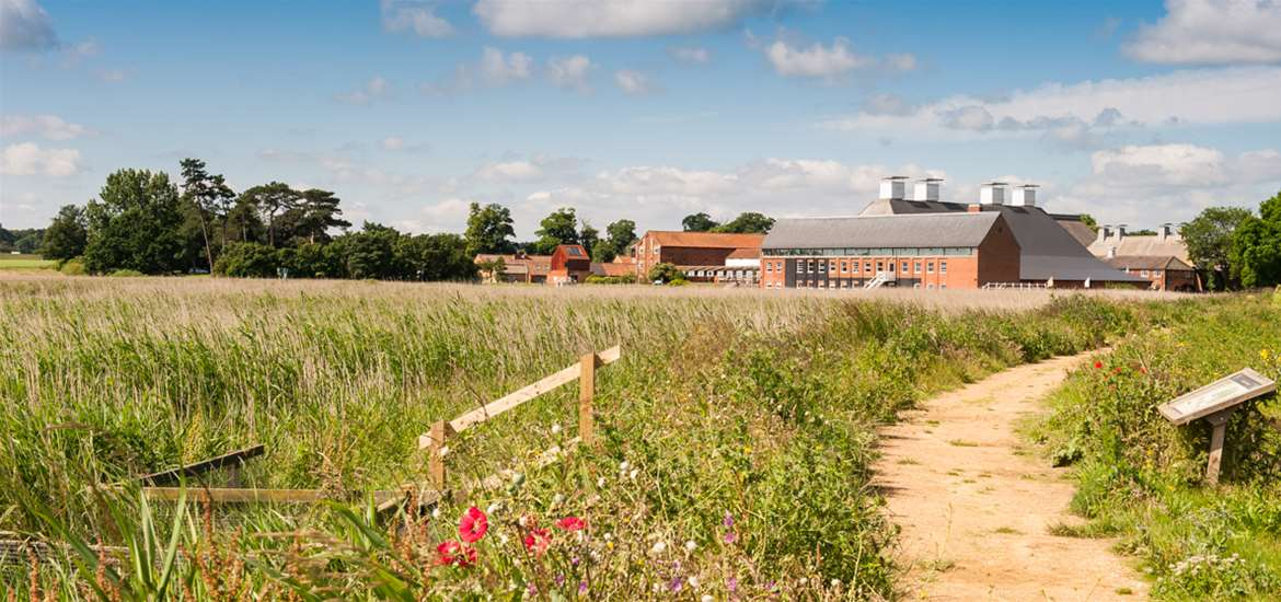 Snape Maltings in Summer - (c) Gill Moon