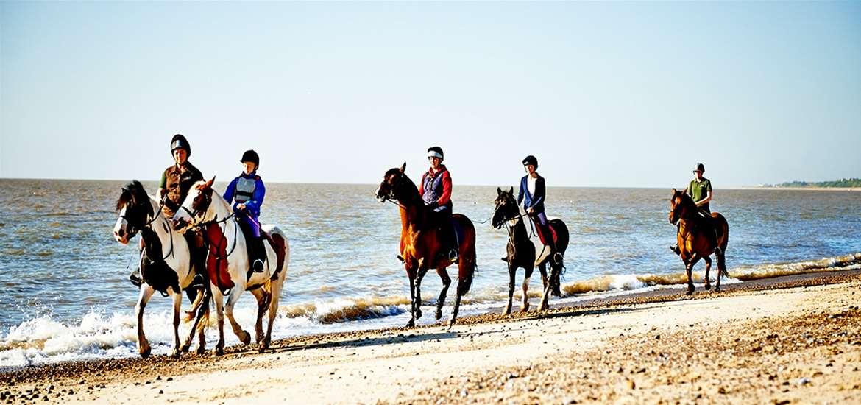 TTDA - Kirkley - Horse Riding