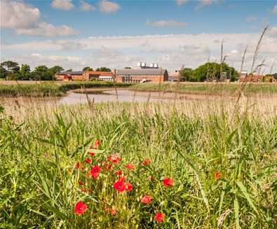 TTDA-Snape Maltings Concert Hall Summertime-Suffolk