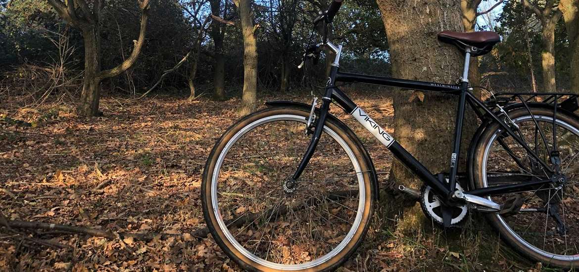 TTDA - Southwold Cycle Hire - Bike in forest