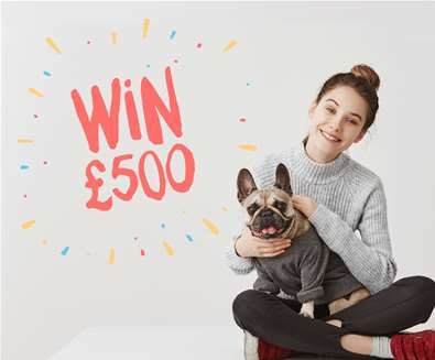 Nationwide competition to find ultimate owner-dog lookalikes!