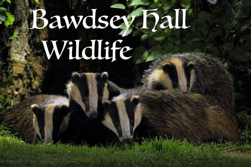 TTD Bawdsey Hall Wildlife
