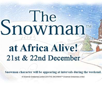 The Snowman™ At Africa..