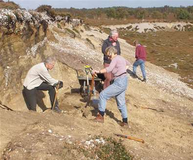 Join In! Volunteering in The Suffolk Coast & Heaths AONB