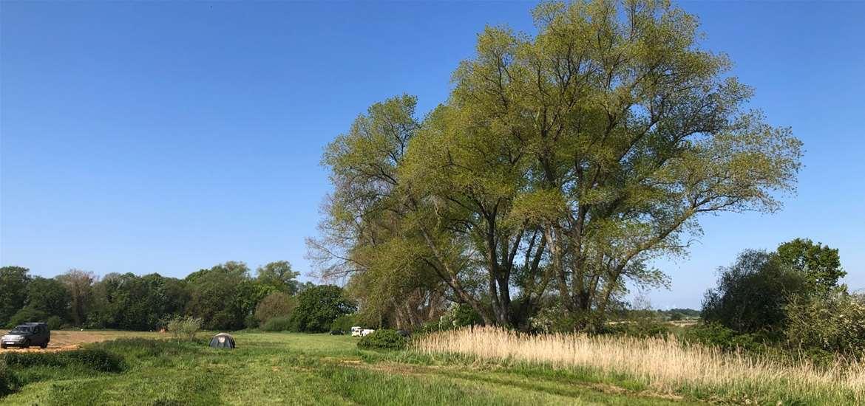WED - Wild Riverside Camping - Field