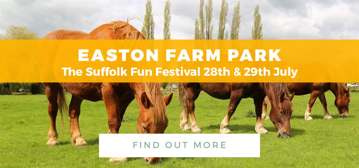Banner Ad Easton Farm Park TTD 1 June to 29 July 2018