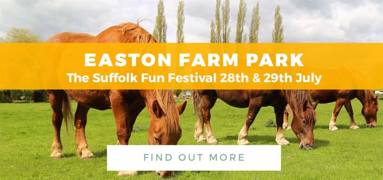 Banner Ad Easton Farm Park TTD 1 June to 29 July Horses