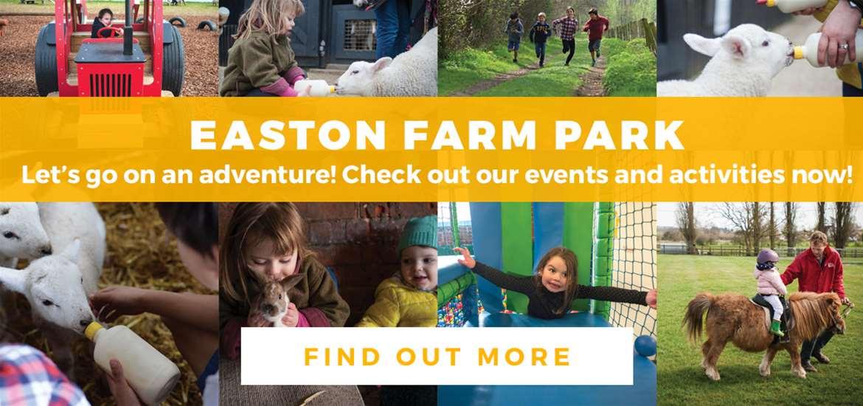 Banner Advertisement Easton Farm Park February 2019