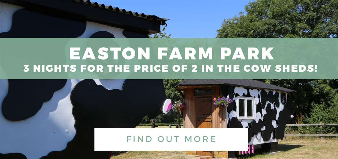 Banner Advertisement WTS Easton Farm Park August 2018