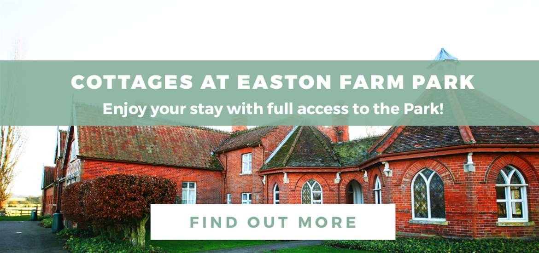 Banner Ad Easton Farm Park March 2019