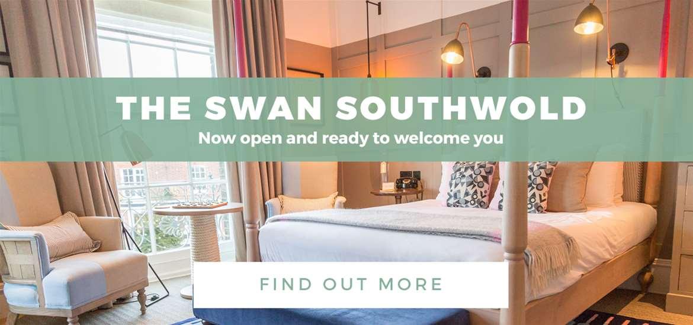 Banner Advertisement  2 The Swan TTDE Year 16 Oct to 13 Nov 2017