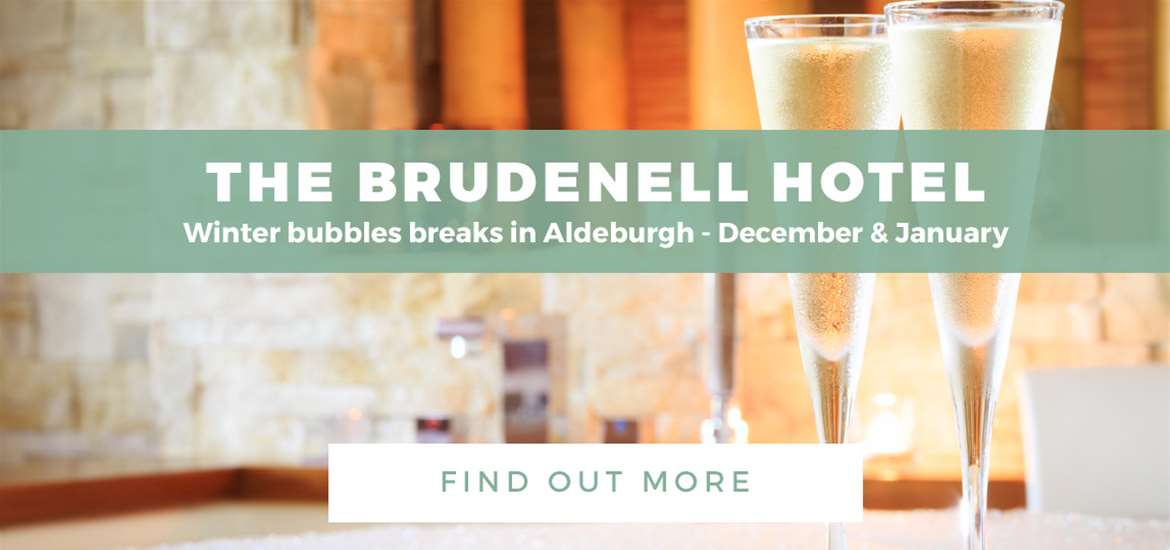 Banner Ad Brudenell Hotel WTS 4 Dec to 1 Jan