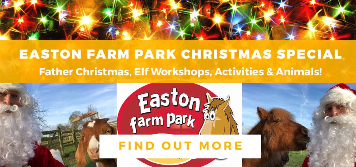 Banner Advertisement Easton Farm Park Nov 2019