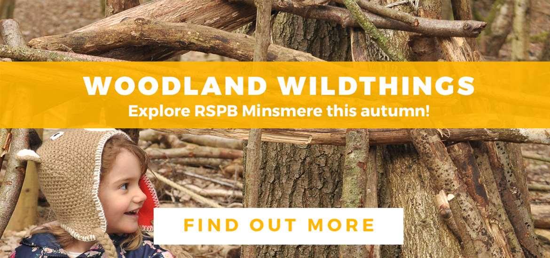Banner Advertisement TTD RSPB Minsmere October 2019