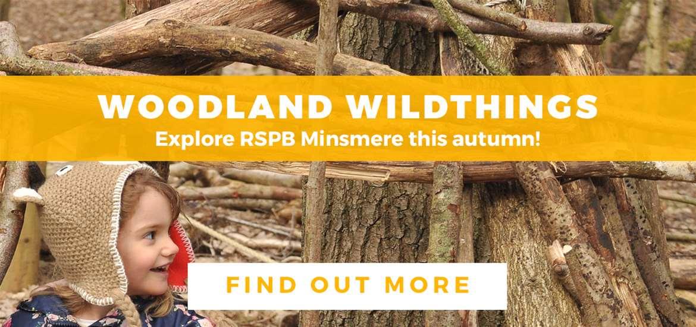 Banner Advertisement RSPB Minsmere October 2019