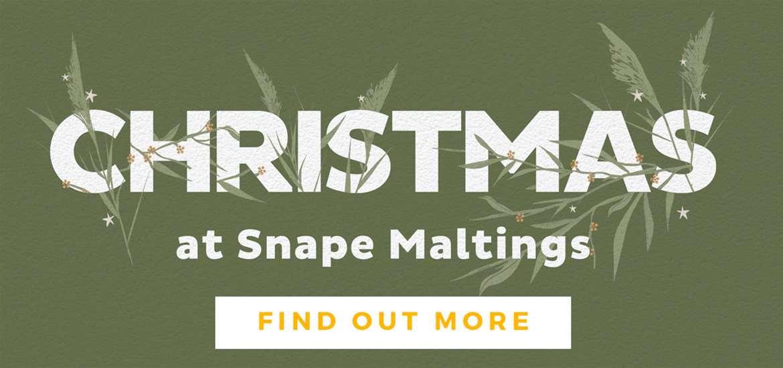 Banner Advertisement Snape Maltings TTD