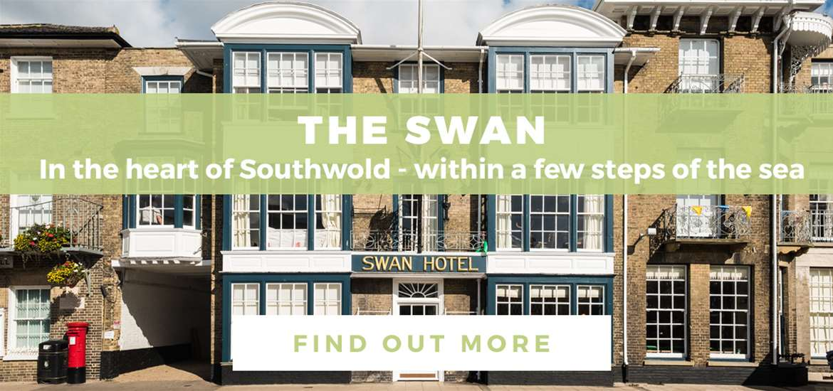 Banner Advertisement The Swan TV March 2020 2