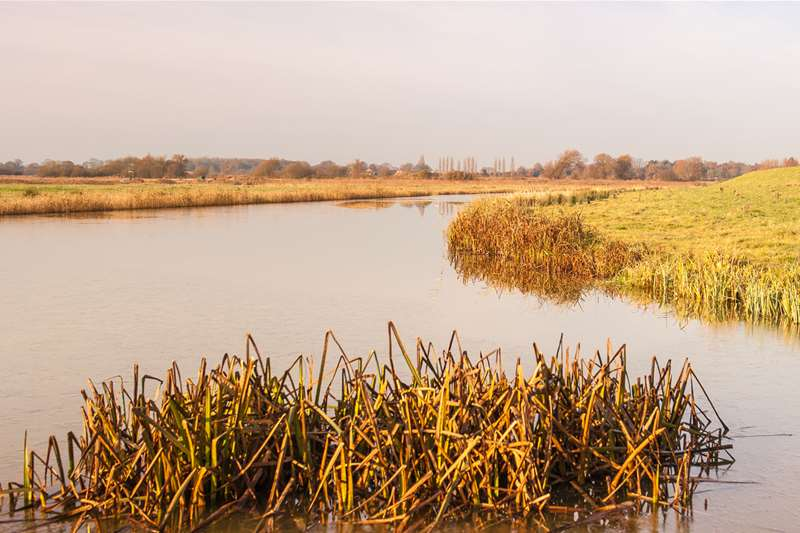Towns & Villages - Lowestoft - Carlton Marshes