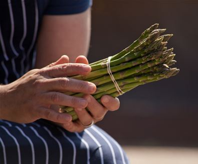 Love Asparagus? Head for The Suffolk Coast