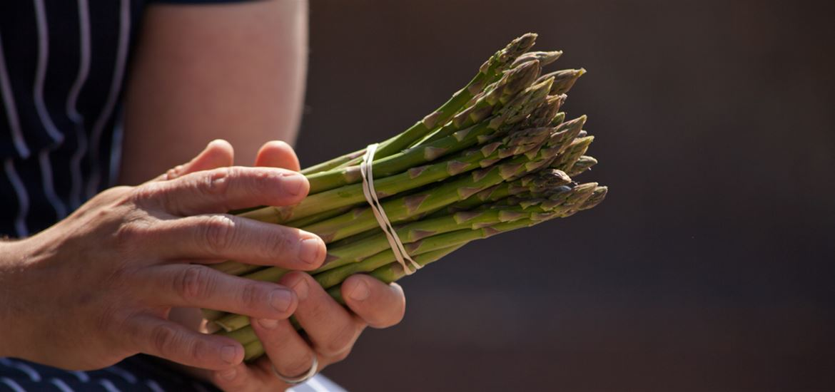 Asparagus on The Suffolk Coast