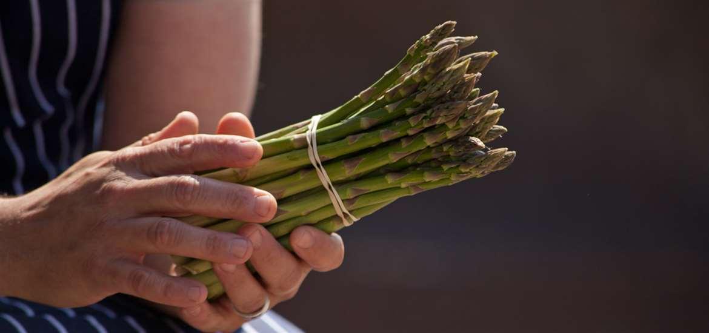 Suffolk Coast Asparagus