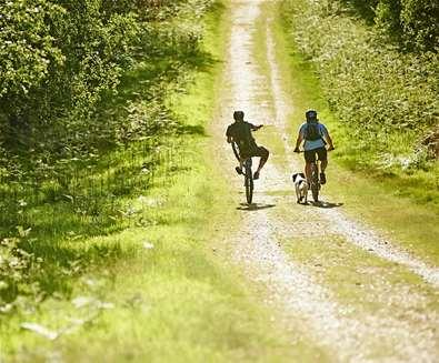 TTDA - Cycling - Tunstall Forest